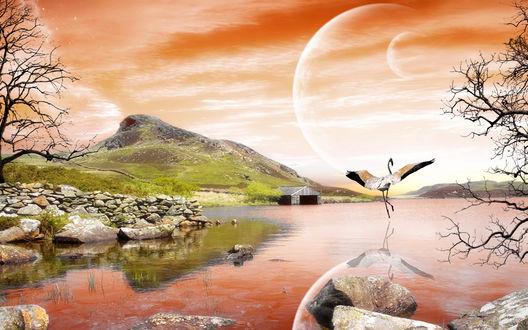 Обои Озеро, танец журавля на заре, художник Алекс Парди / Alex Pardee, арт
