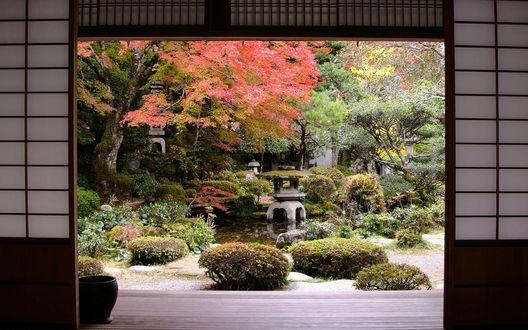 Обои Поднята легкая перегородка, и прямо из комнаты открывается выход в красочный японский осенний сад