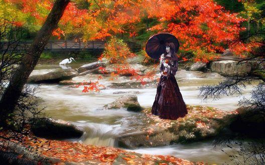 Обои Девушка с зонтиком в восточном саду, вода, камни, белая цапля, деревья в осеннем наряде