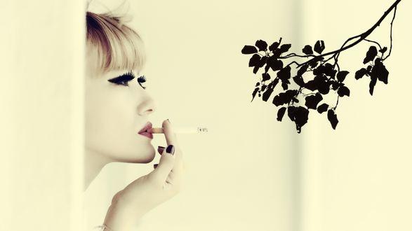 Обои Девушка курит и смотрит на цветочную ветку