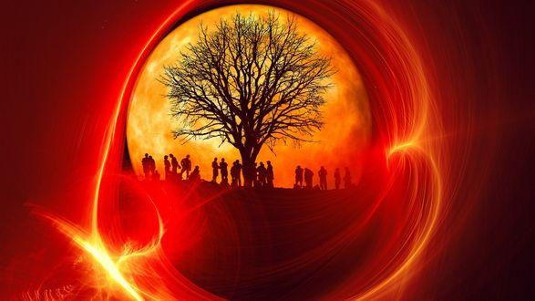 Обои Древо жизни, силуэты дерева, людей, на фоне солнца, в круге огня, на черно- красном фоне, композиция