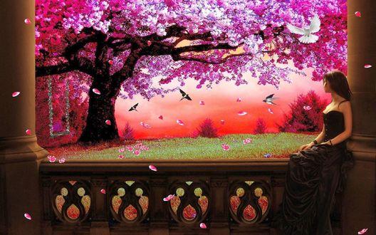 Обои Весна, цветет вишня, летают птицы, на перилах веранды сидит девушка, над ней вьется белый голубок