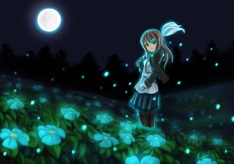 Обои Девушка стоит среди голубых цветов