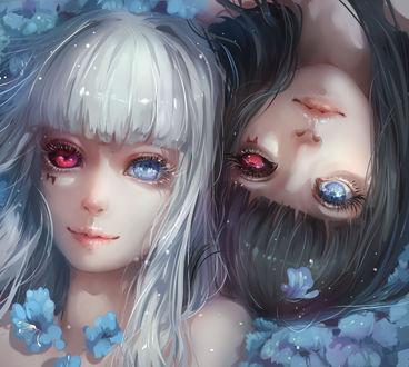 Обои Наширо Ясухиса / Nashiro Yasuhisa и Курона Ясухиса / Kurona Yasuhisa из аниме Токийский монстр / Tokyo Ghoul