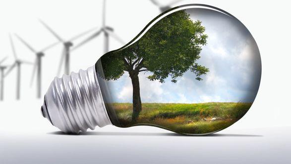 Обои Пейзаж с одиноким деревом внутри электрической лампочки, на бело-сером фоне
