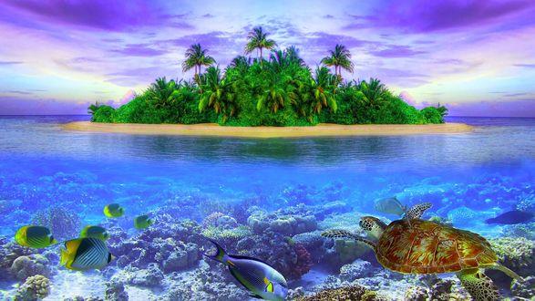 Обои Зеленый остров в океане