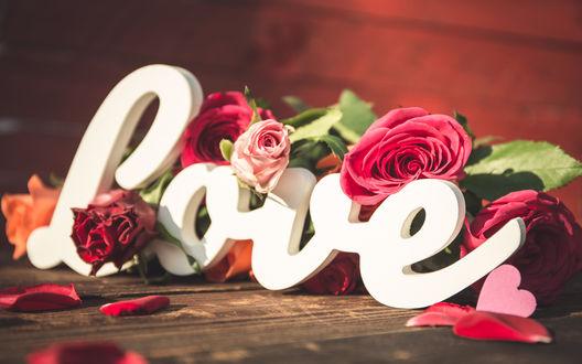 Обои Розы и слово love / любовь