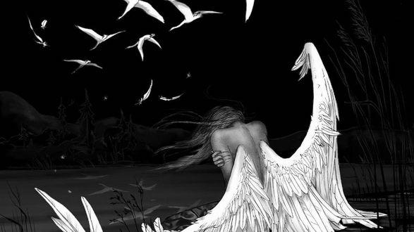 Обои Девушка Ангел сидит на берегу реки, над которой пролетает стая белых лебедей