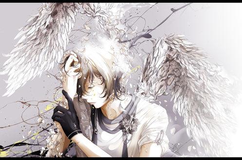 Обои Грустный ангел, by ポウ