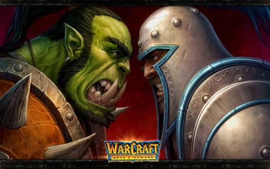 Обои Человек и орк стоят лицом к лицу / арт на игру World of Wacraft
