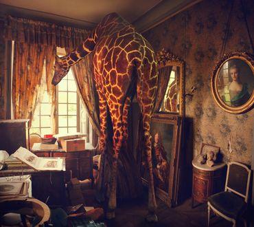 Обои В маленьком уютном кабинете на столе лежат книги, возле зеркала на полу портрет мужчины на стене портрет красивой женщины, а возле окна стоит жираф и с любопытством смотрит на улицу by Miss Aniela (Мисс Аниела)