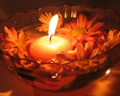Обои Свеча плавает в вазе с цветами, крупным планом