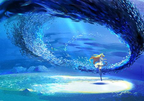 Обои Девушка стоит внутри вихря из рыб под водой, by 無言