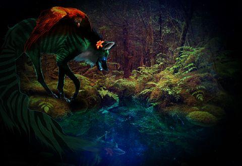 Обои Фантастический волк с птицей на нем у водоема, by Lexxcellent