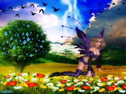 Обои Девушка эльф с фиолетовыми крыльями сидит на поляне, на которой растут красные маки и ромашки на фоне дерева с голубыми цветами, летящих черных птиц и голубого неба, by Isabelle