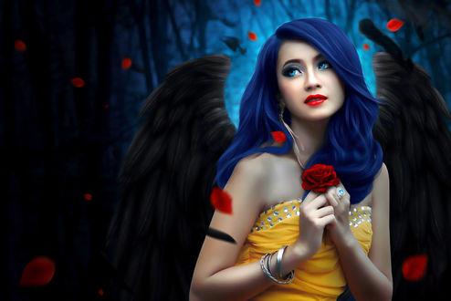 Обои Девушка с синими волосами, ярко-голубыми глазами с черными крыльями держит красную розу в руках