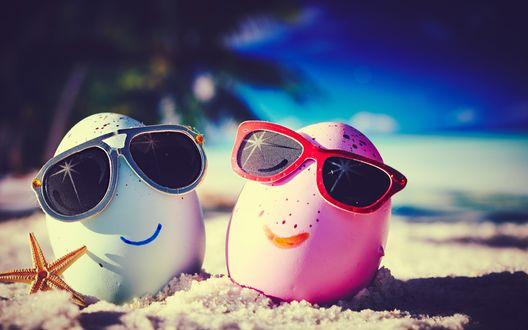 Обои Голубое и розовое яйцо отдыхают на пляже в солнцезащитных очках