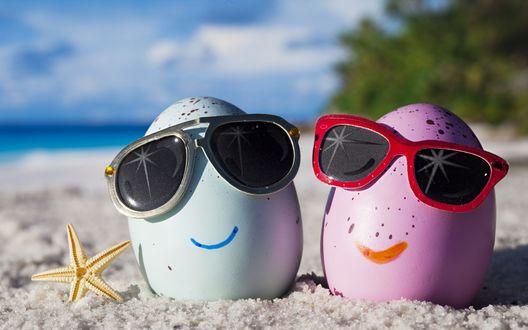 Обои Два яйца в солнцезащитных очках отдыхают на песчаном пляже, на берегу моря