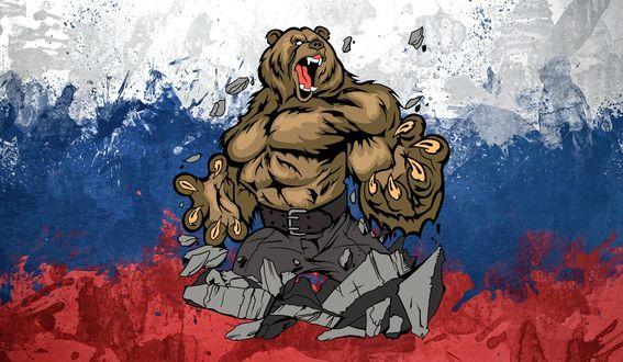 Обои Медведь на фоне российского флага