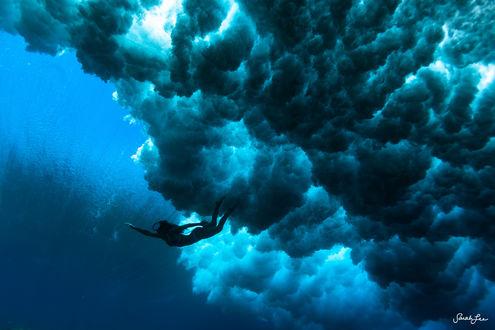 Обои Девущка под водой, фотограф Sarah Lee