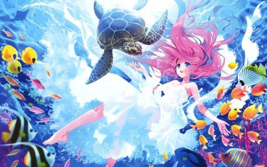 Обои Розоволосая девушка в белом платье с морской черепахой и рыбами под водой