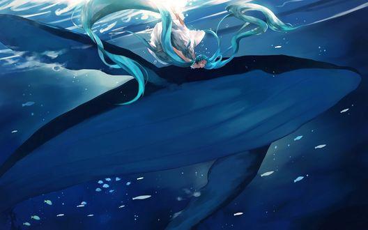 Обои Плавающая рядом с китом вокалоид Хатсуне Мику / Hatsune Miku в белом платье под водой на фоне рыб и медуз