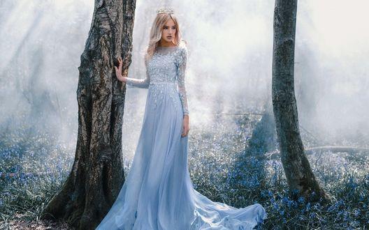 Обои Девушка в длинном нежно-голубом платье и короной на голове стоит у дерева в лесу