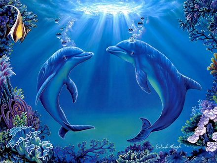 Обои Два дельфина под водой освещенные лучами солнца пробивающимися сквозь воду, by Belinda Leigh
