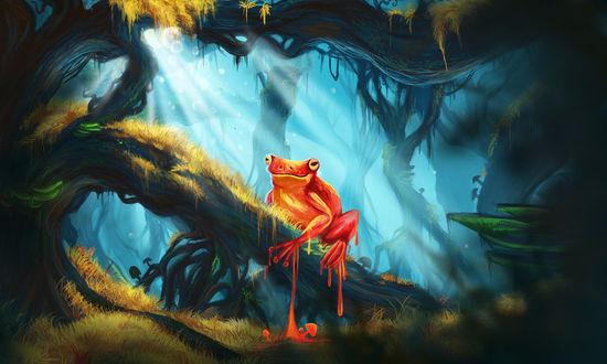 Обои Сказочная лягушка сидит на дереве, by Casselloma