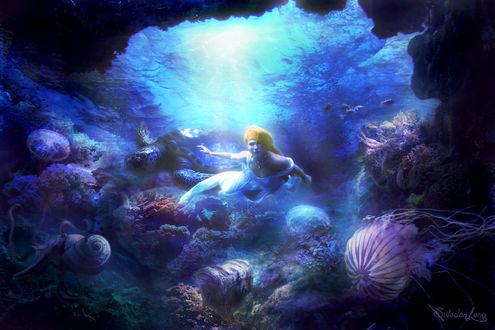Обои Рыжеволосая девушка под водой в окружении морских обитателей: черепахи, рыбок, медуз, by SwedenLena