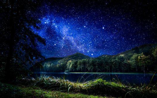 Обои Звездная ночь освещает лес и тихую водную гладь