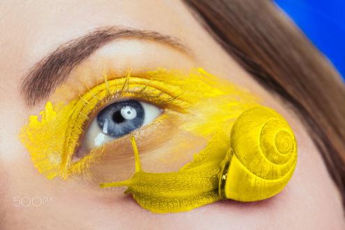 Обои Желтая улитка на лице, у глаза девушки, фотограф Julia Wimmerlin