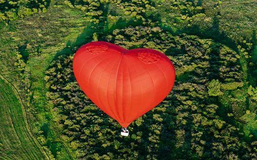 Обои Воздушный шар в виде сердца летит над лесом