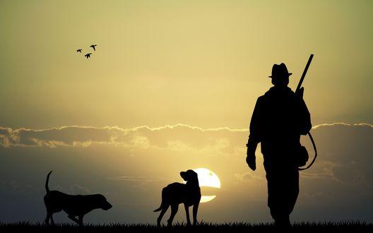 Обои Силуэты охотника с ружьем и двух собак на фоне заходящего солнца