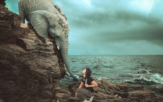 Обои Мужчина и слон на скалах у моря
