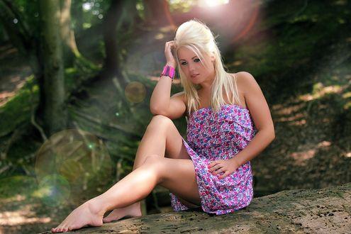 Обои Блондинка в ярком платье, сидит на огромном бревне, на опушке леса, выставив красивые ножки