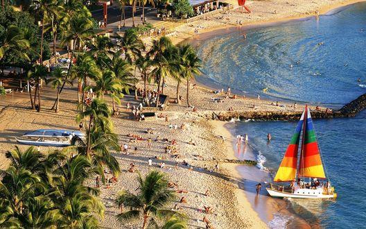 Обои Курортный пляж, пальмы, море, яхта, лето