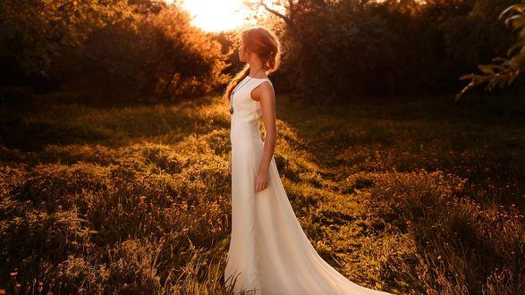 Обои Девушка в белом платье загадочно стоит на лесной полянке