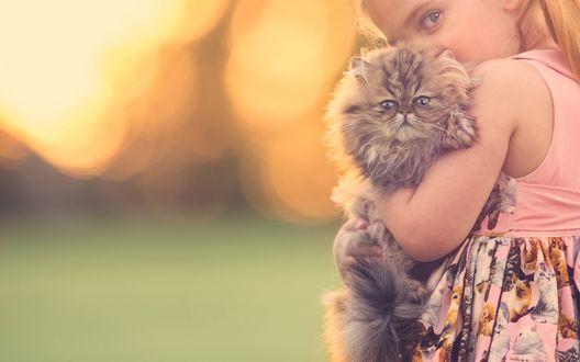 Обои Девочка в розовом платье с котятами держит на руках пушистого котенка