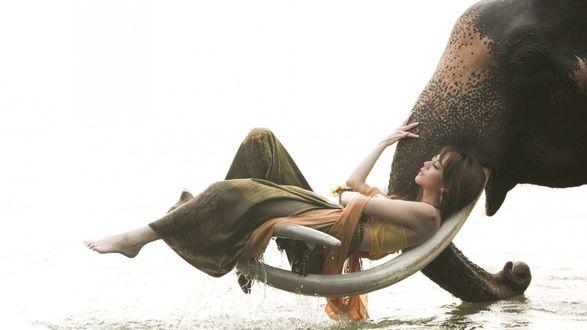 Обои Девушка лежит на бивнях слона над водой