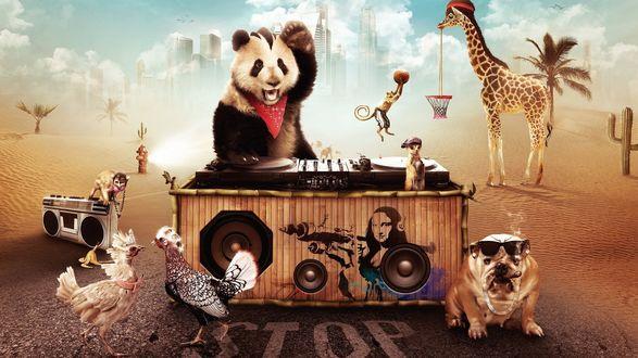 Обои Животные, похожие на людей: панда - dj / диджей, куропатки изображающие модниц, пес породы бульдог в очках и с сигарой, суслик с баллончиком для граффити, обезьяны, и жираф, держащий корзину для баскетбола (stop)