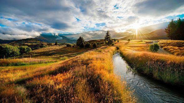 Обои Река, протекающая через поле, освещенное солнцем