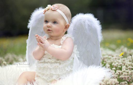 Обои Девочка в костюме ангела на цветочной полянке