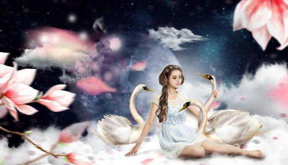 Обои Девушка-шатенка с длинными волосами в белом платье сидит на облаке с тремя белыми лебедями на фоне луны и неба и цветущих розовых цветов