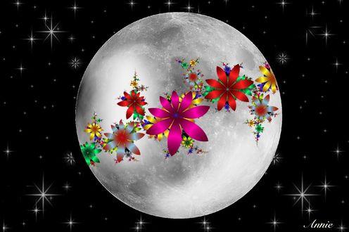 Обои Луна в цветочном венке, by Annie