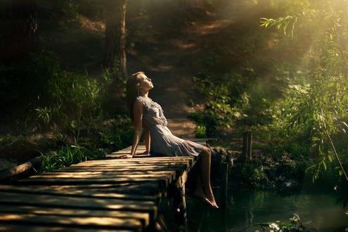Обои Девушка в лесу сидит на мостике у речки