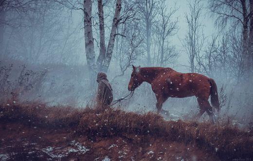 Обои Девочка ведет лошадь по лесной дороге в снегопад