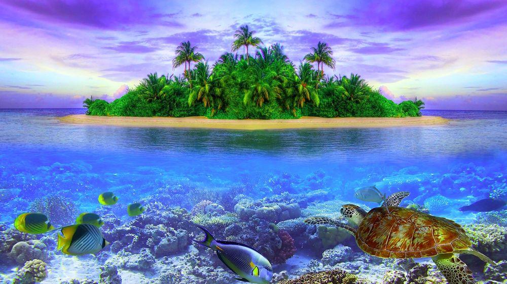 Красивые фото заката на море