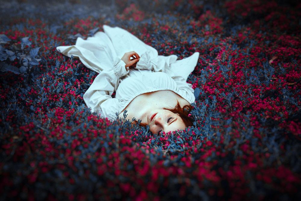 Обои для рабочего стола Девушка лежит на поляне цветов, фотограф Ronny Garcia