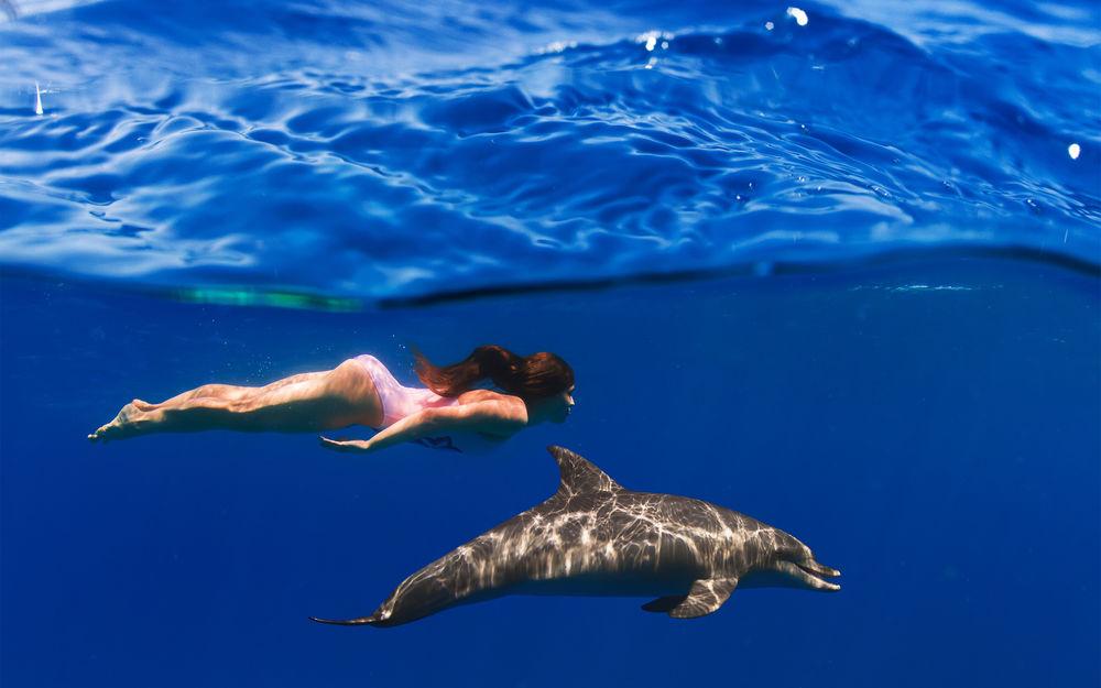 К чему снится Плавать во сне  по 90 сонникам! Если видишь
